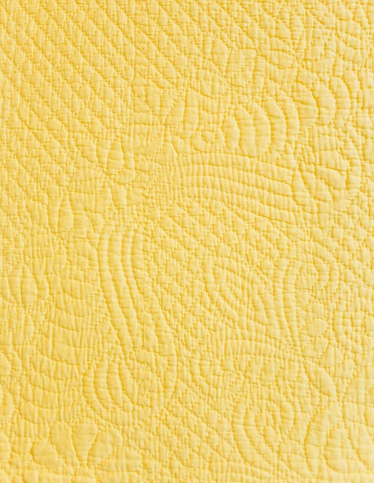 Ostrich feather sprays stitched onto yellow fabric